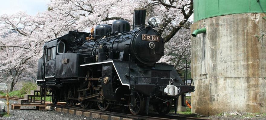 若桜駅 SLと桜