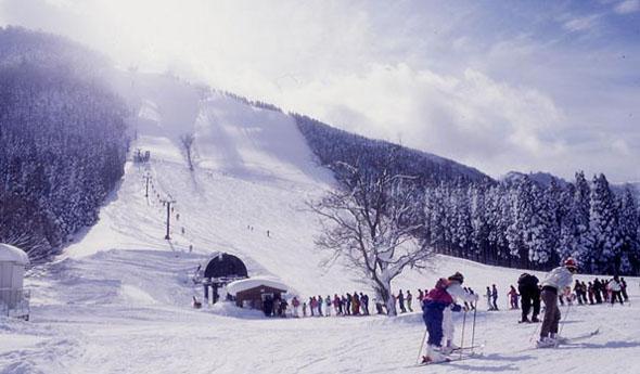 氷ノ山スキー場